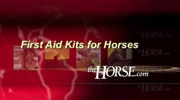 """First Aid Kits for Horses"" Video Title Screen"