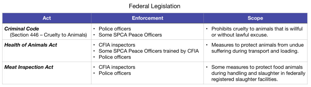 Federal Legislation Table with type of act, enforcement and scope of coverage columns.