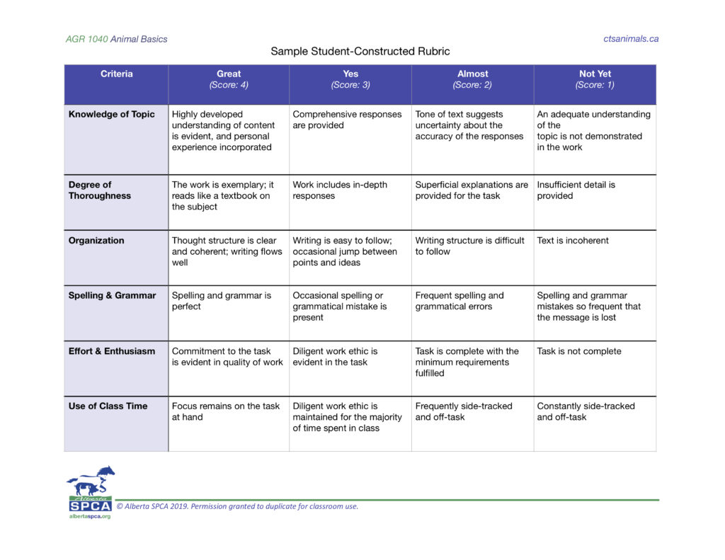 Sample rubric table with five criteria and four levels of performance