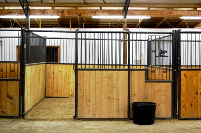 Photograph of clean well-lit horse stall